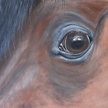 Eye Eye by angela-mcintyre