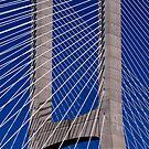 Vasco da Gama Bridge by SpencerCopping