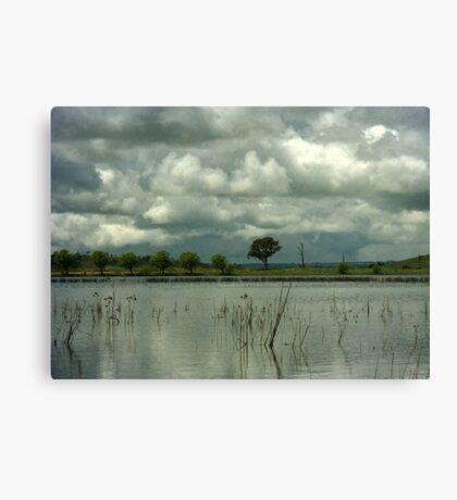 Wet Season Canvas Print