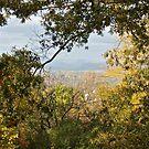 A Dramatic Autumn Vista - Blue Ridge Moutains from Monticello, VA by Jack McCabe