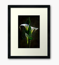 """The Power of Three ..."" Framed Print"