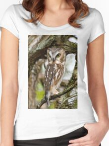 Northern Saw Whet Owl - Amherst  Island, Ontario Women's Fitted Scoop T-Shirt