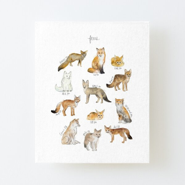 Foxes Canvas Mounted Print