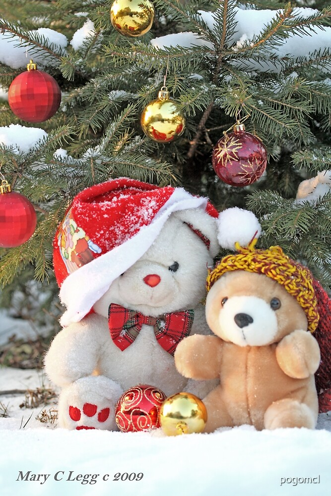 Fatso Bear and Little Red Panda under the outdoor Christmas Tree by pogomcl