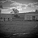 Rural Ruins by bazcelt