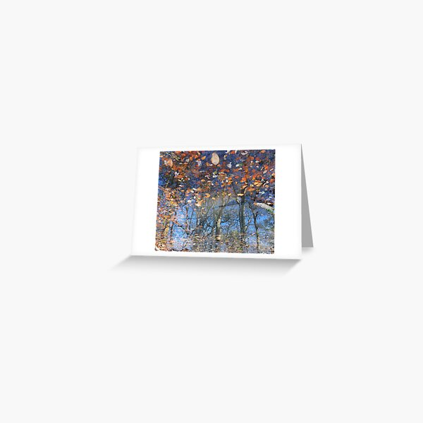 Canopy Reflections Greeting Card