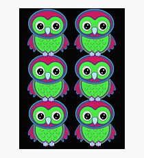 Colorful Owls .. tee shirt Photographic Print