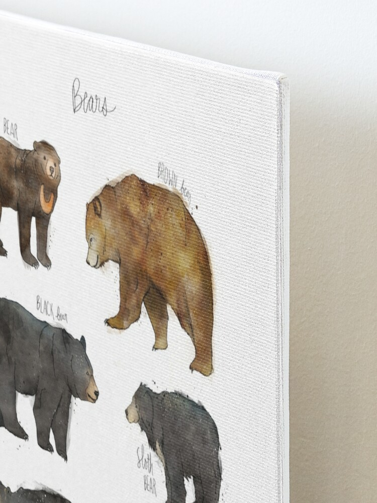Alternate view of Bears Mounted Print