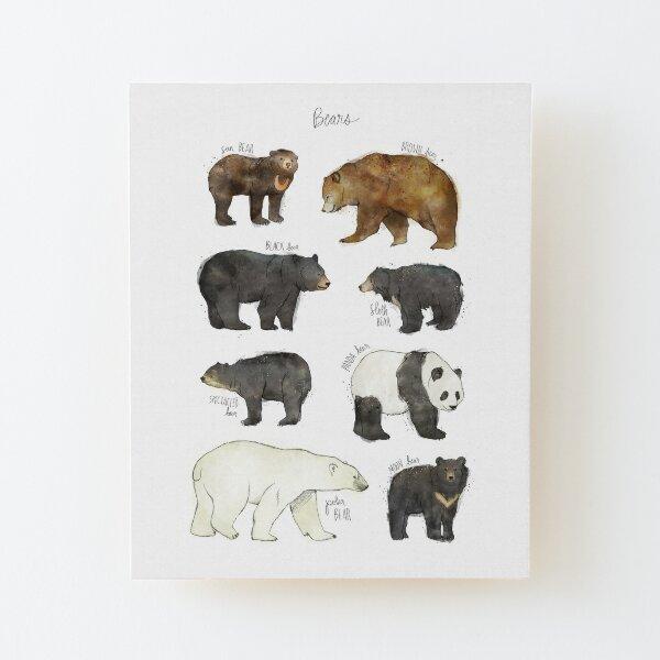 Bears Wood Mounted Print