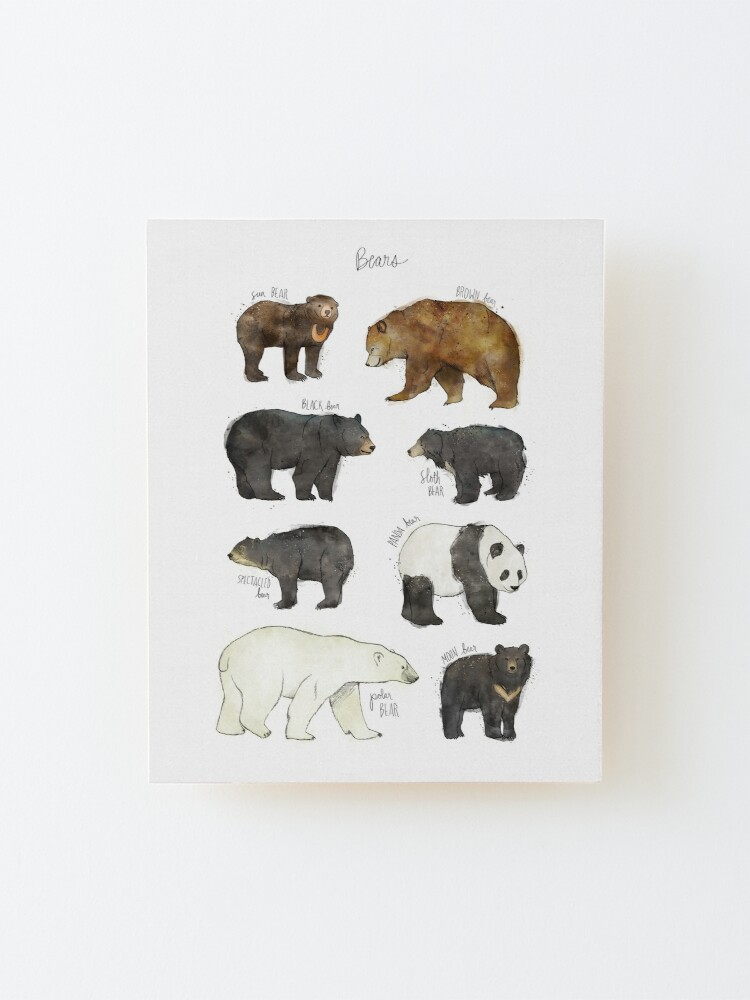 Alternate view of Bears Mounted Print