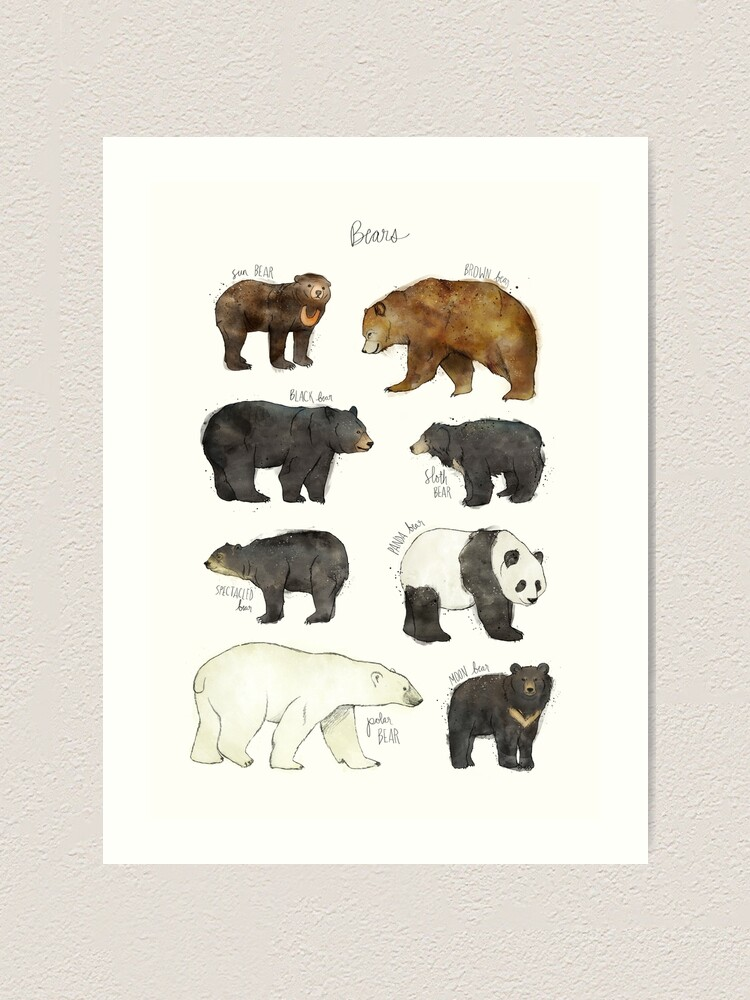 Alternate view of Bears Art Print