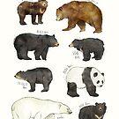 Bären von Amy Hamilton