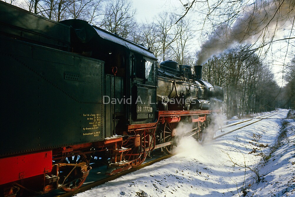 Steam train in forest, Germany, 1985 by David A. L. Davies