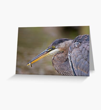 Small fry! Greeting Card