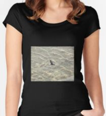 Wedge-Tailed Eagle Soaring Women's Fitted Scoop T-Shirt