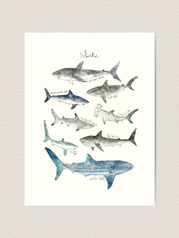 Alternate view of Sharks Art Print