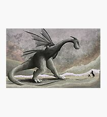 Hunting a troublesome dragon. Photographic Print