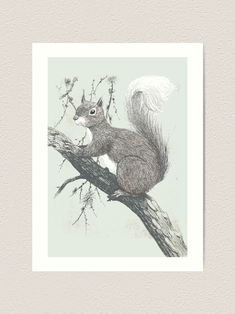 Alternate view of Squirrel in a tree Art Print