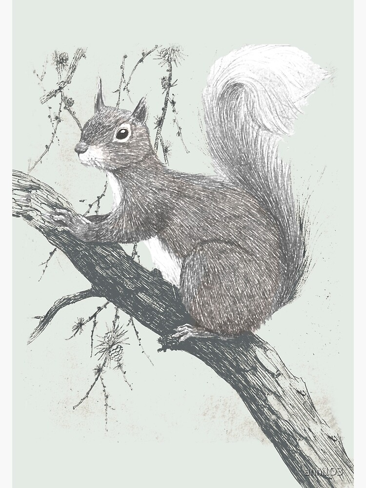 Squirrel in a tree by anni103