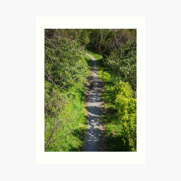 Walking And Cycling Track Art Print