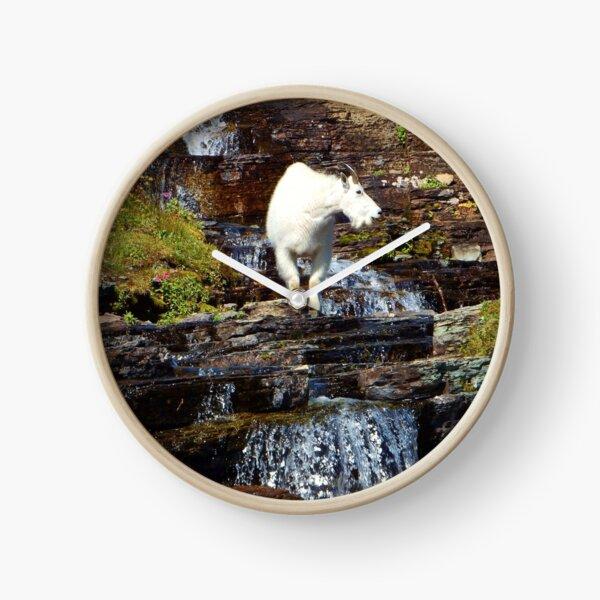 Logan Pass Mountain Goat Clock