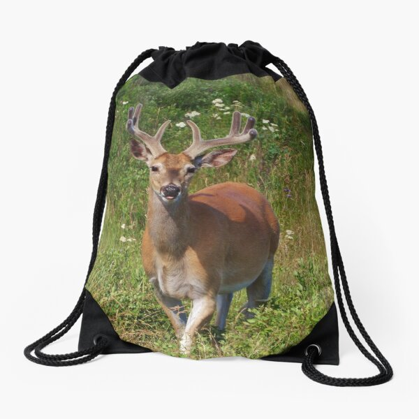 Fenceline Buck Drawstring Bag