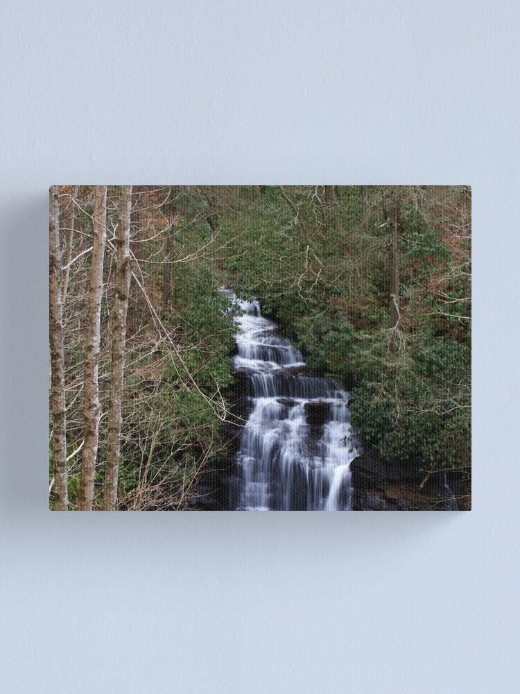 Alternate view of Soco Falls ll Canvas Print