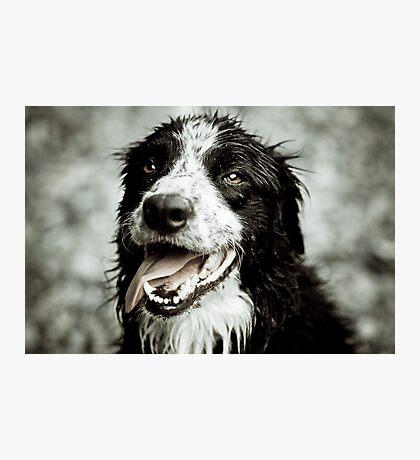 Happy Hunter Photographic Print