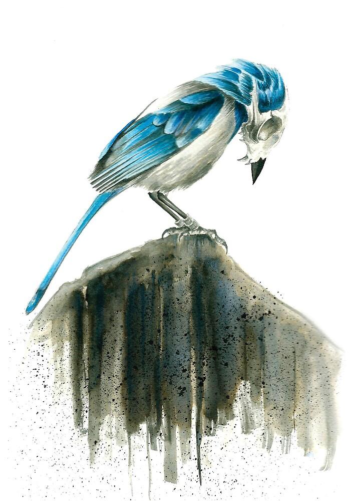 Bird Evolution by RebelMonkey