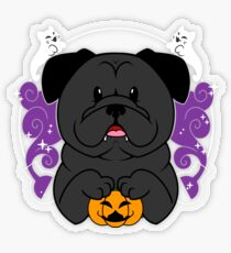 Licorice the Black Pug Transparent Sticker