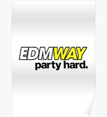 EDMWAY (special edition) Poster