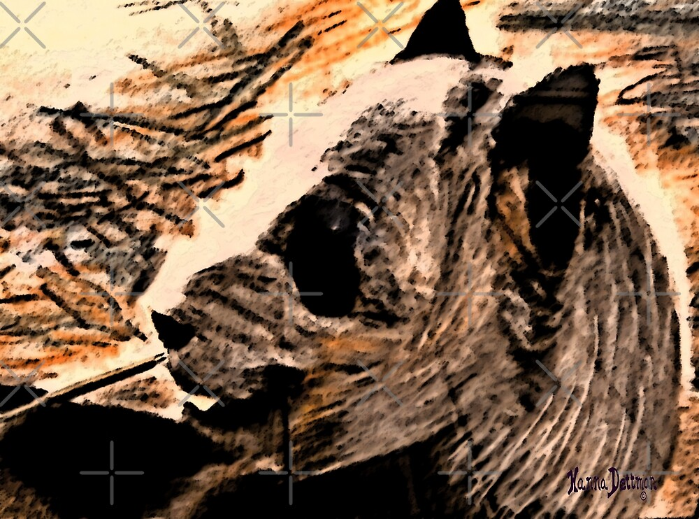 Panda Afternoon by hdettman