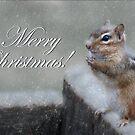 Chippy Christmas by Lori Deiter