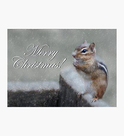 Chippy Christmas Photographic Print