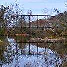 The Old Iron Bridge by barnsis
