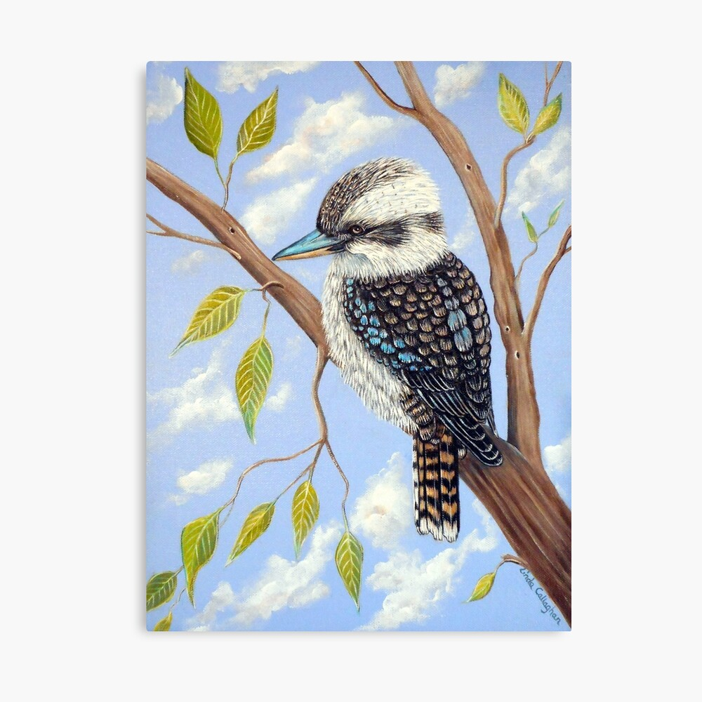 KOOKABURRA - LAZY DAYS Canvas Print