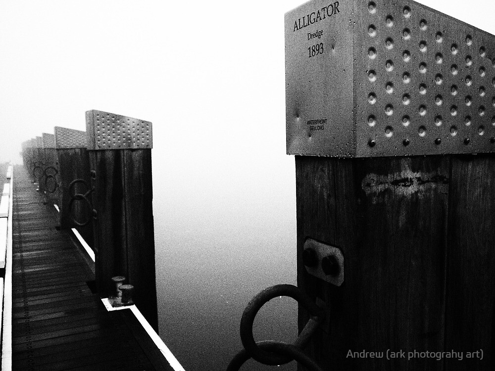 One Foggy morning by Andrew (ark photograhy art)