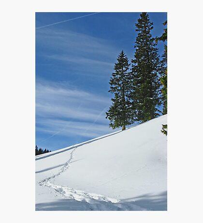 Alps 2 Photographic Print