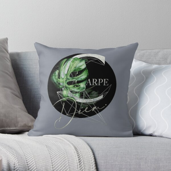 Carpe Diem – Inspiring quote in silver Throw Pillow