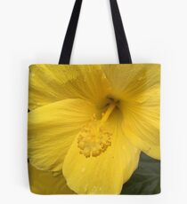 Atlanta, GA.  -- Spring Blooms I If you like, purchase, try a cell phone cover thanks! Tote Bag