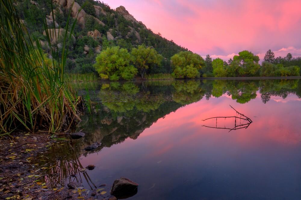 Split Pink by Bob Larson