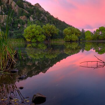 Split Pink by boblarsonphoto