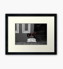 Doorstop Pony Framed Print