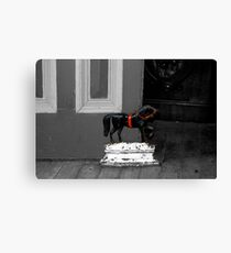 Doorstop Pony Canvas Print