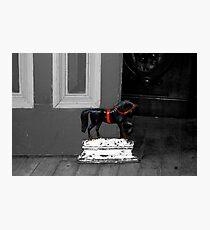 Doorstop Pony Photographic Print