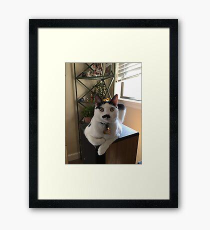 Mustache Cat on Stereo  Framed Print
