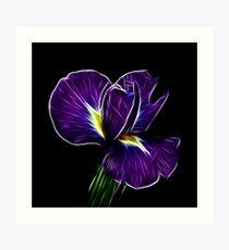 Iris Fractalius Art Print