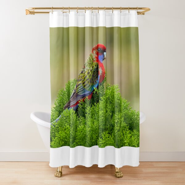 Rosella Shower Curtain