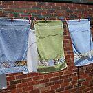 Drying In The Breeze. by joycee