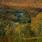 Montgomery Hillside Of Color by Deborah  Benoit